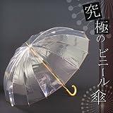 究極のビニール傘 かて~る16(丈夫なビニール傘・透明傘)