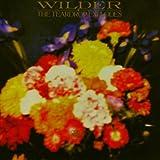 Wilderby Teardrop Explodes