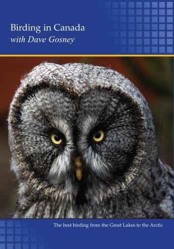 Birding in Canada (PC)