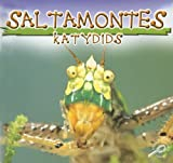 Saltamontes (Katydids) (Insects Discovery Library (Bilingual)) (Spanish Edition)