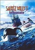 Sauvez Willy 3, la poursuite