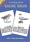 Learning About Shore Birds (Dover Little Activity Books) (0486420566) by Sy Barlowe