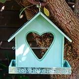 Acquista Gardens2you - Mangiatoia per uccelli con supporto mela a forma di cuore, dipinta in colore verde chiaro