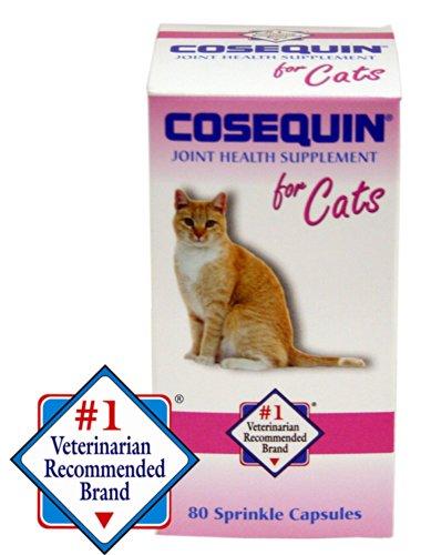 nutramax cosequin capsules 80 count 4 pack animals pet supplies pet supplies cat supplies. Black Bedroom Furniture Sets. Home Design Ideas