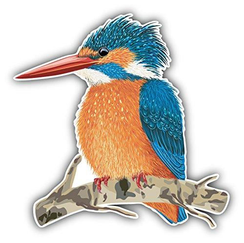 kingfisher-bird-pegatina-de-vinilo-para-la-decoracion-del-vehiculo-12-x-12-cm