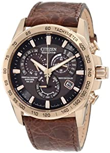 Citizen Men's AT4003-04E Perpetual Chrono A-T Limited Edition Watch