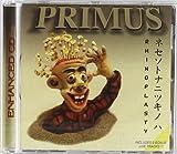 Rhinoplasty by PRIMUS (1998-08-11)