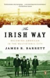 img - for The Irish Way: Becoming American in the Multiethnic City (The Penguin History of American Life) book / textbook / text book