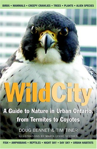Wild City A Guide To Nature In Urban Ontario, from Termites to Coyotes