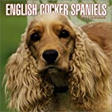 English Cocker Spaniels 2004 Calendar