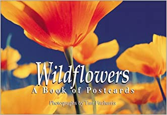 Wildflowers: A book of postcards (Firefly Postcard Book)