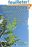 How to grow a Moringa Tree: The Ultim...