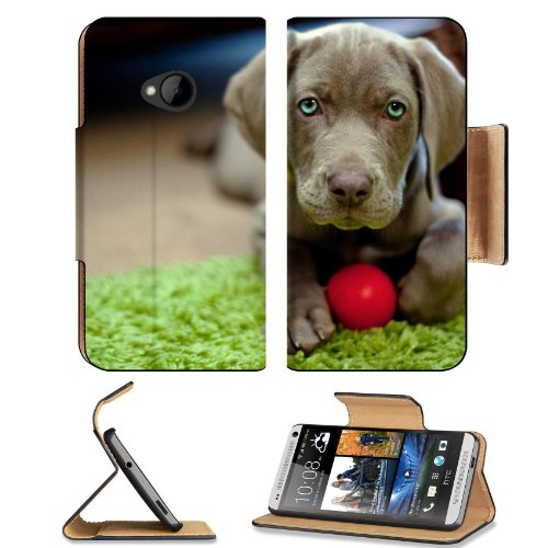 Dog Puppy Snout Ball Toy Htc One M7 Flip Cover Case With Card Holder Customized Made To Order Support Ready Premium Deluxe Pu Leather 5 11/16 Inch (145Mm) X 2 15/16 Inch (75Mm) X 9/16 Inch (14Mm) Liil Htc One Professional Cases Accessories Open Camera Hea front-37008