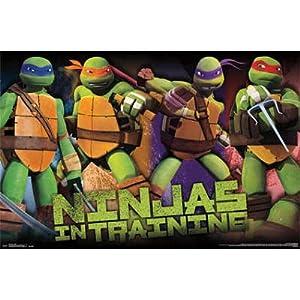 amazoncom 22x34 teenage mutant ninja turtles profile