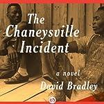 The Chaneysville Incident: A Novel | David Bradley