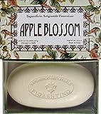 Saponificio Artigianale Fiorentino Apple Blossom Boxed Soap 10.5 Oz Bar