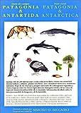 Patagonia & Antarctica Field Guide