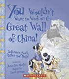 You Wouldn't Want to Work on the Great Wall of China!: Defenses You'd Rather Not Build (You Wouldn't Want to...)