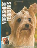 Wendy Bedwell-Wilson Yorkshire Terriers