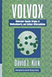 Volvox: Molecular-Genetic Origins of Multicellularity and Cellular Differentiation (Developmental and Cell Biology Series) (0521452074) by Kirk, David L.