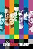 The Big Bang Theory Poster Collage - Poster Großformat (61cm x 91,5cm)
