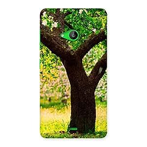 Impressive Green New Tree Back Case Cover for Lumia 535