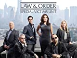 Law & Order: Special Victims Unit: Vanity's Bonfire