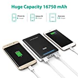 Portable Charger RAVPower 16750mAh External Battery Power Bank 4.5A Dual USB Output (iSmart Technology) Black