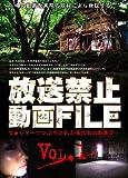 放送禁止動画FILE Vol.1 ツ●ッターでつぶやかれた噂のあの動画が・・・ [DVD]