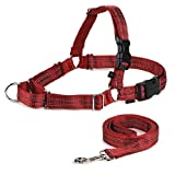 Premier REFLECTIVE EASY WALK HARNESS with 6-ft Leash Large - Red