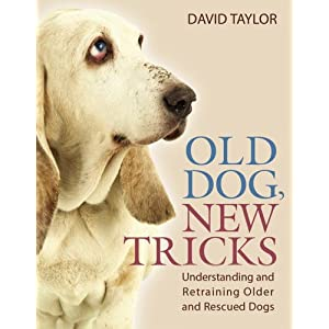 Old Dog, New Tricks: Understanding and Retraining Older and Rescued Dogs