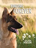 Finding Forever: The Dogs of Coastal German Shepherd Rescue