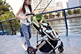 AiQi-Newborn-Baby-Foldable-Anti-shock-Carriage-Infant-Stroller-Pushchair-Pram-with-Bassinet-Green