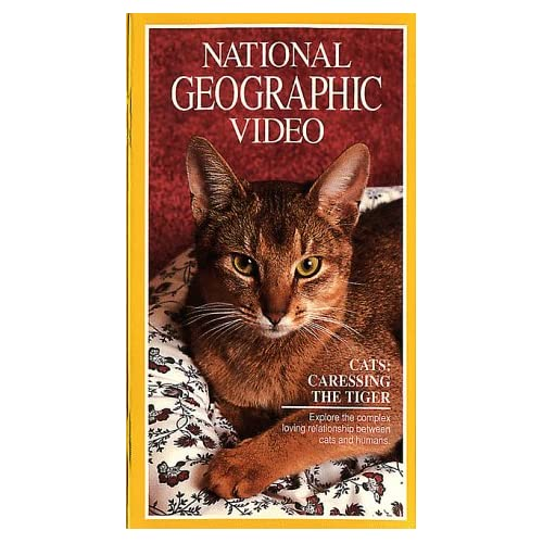 Amazon.com: National Geographic Video: Cats: Caressing the Tiger [VHS
