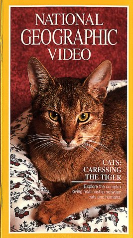 National Geographic Video: Cats: Caressing the Tiger [VHS]