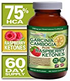 Garcinia Cambogia 75% HCA Plus Raspberry Ketones with No Added Calcium - 60 Day Supply All Natural Weight Loss Supplement