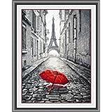 Glory GNI Red Umbrella in Paris Rain Counted Cross Stitch Kit, White Cloth (Color: White cloth, Tamaño: 14CT 9.85x15inch)