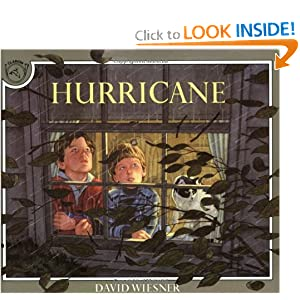 Hurricane Book &amp; CD (Read Along Book &amp; CD)