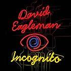 Incognito: The Secret Lives of the Brain Hörbuch von David Eagleman Gesprochen von: David Eagleman