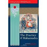 The Practice Of Mahamudraby Drikung Kyabgon Chetsang