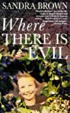 Where There is Evil (0330367579) by Brown, Sandra