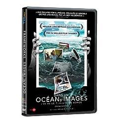 Dans Un Ocean D'Images