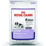 Royal Canin Giant Starter Mother Baby Dry Dog Food