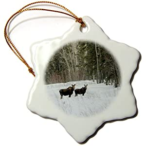 3dRose orn_51015_1 Cow and Calf Moose Stand and Watch from The Side of The Alaska Highway Snowflake Porcelain Ornament, 3-Inch