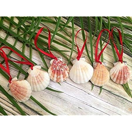 51TFoYFJ-cL._SS450_ Beach Christmas Ornaments and Nautical Christmas Ornaments