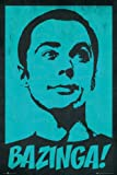 GB eye The Big Bang Theory Sheldon Maxi Poster, Multi-Colour