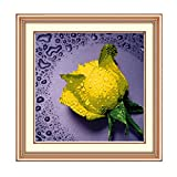 Zeagoo 5D Cross Stitch Needlework DIY Painting Floral Permanent Embroidery Decoration