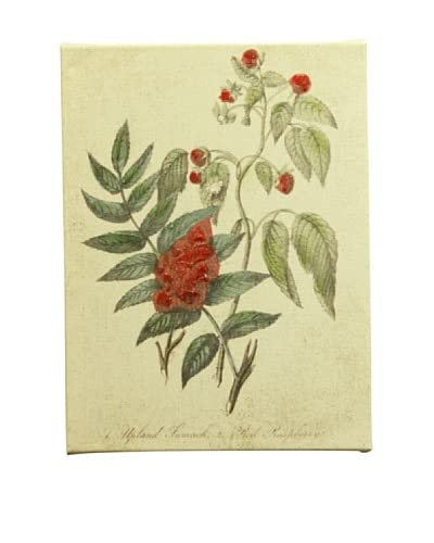 New York Botanical Garden Botanicals Giclée on Linen Canvas As You See