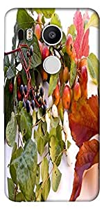 Snoogg Autumn Designer Protective Back Case Cover For Lg Google Nexus 5X