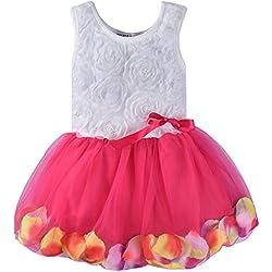 ZOEREA neonate bambina collezione Layered Organza Ruffle Skirt Pageant bowknot senza maniche Rose Garden del petalo del fiore Lace Ruffle Partito vestito in pizzo(Bambino 0-36)